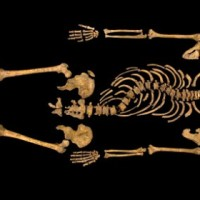 "Should 'Richard Crookback' – The Vanquished Richard III – Be Welcomed ""Home"" To Yorkshire?"